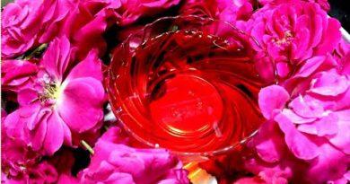 13 Surprising Health Benefits of Rose Essential Oil!