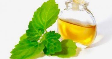 5 Amazing Health Benefits Of Patchouli Oil