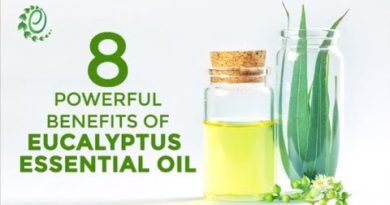 8 Powerful Benefits Of Eucalyptus Essential Oil | Organic Facts