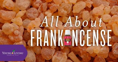 All About Frankincense | Young Living Essential Oils