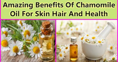Amazing Benefits Of Chamomile Oil For Skin Hair And Health