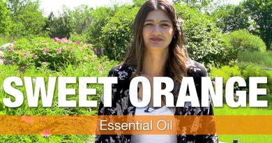 Essential Oil Series - Sweet Orange Oil