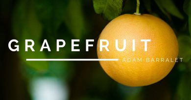 Grapefruit - The Oil of Honouring Thyself