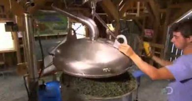 How Its Made Lavender Essential Oil