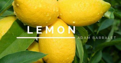 Lemon - The Oil of Brilliance