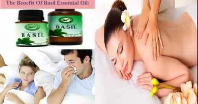 The Benefit Of Basil Essential Oil