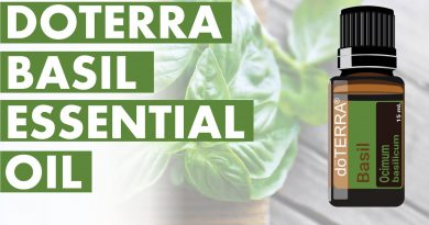 Basil Essential Oil: Awesome Benefits And Uses