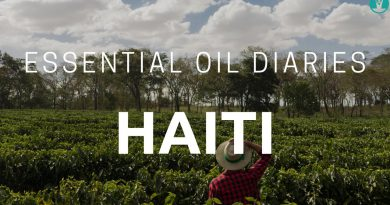 Essential Oil Diaries - Haiti