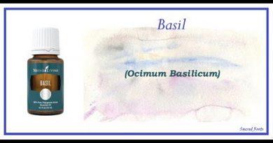 Essential Oils 101: Basil