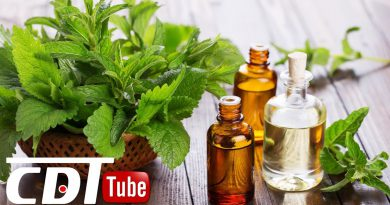 Essential Patchouli Oil Benefits and Uses! | CDT NEWS