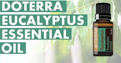 Eucalyptus Essential Oil: Fantastic Benefits And Uses