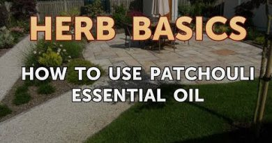 How to Use Patchouli Essential Oil