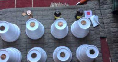 Penny drop test - ESSENTIAL OILS - WHICH BREAKS DOWN STYROFOAM THE QUICKEST -LEMON OIL -