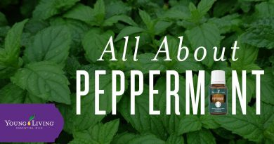 All About Peppermint | Young Living Essential Oils
