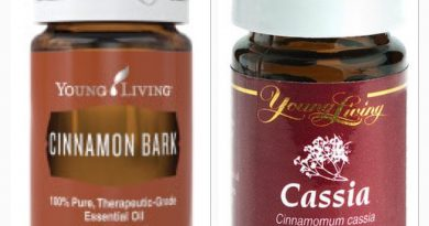 Cassia & Cinnamon Essential Oil   What's the Difference?