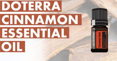 Cinnamon Essential Oil: Incredible Benefits And Uses