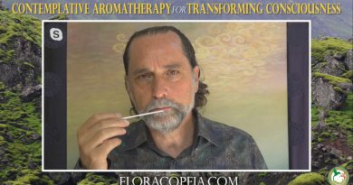 Contemplative Aromatherapy - Clary Sage Essential Oil with David Crow, L.Ac.