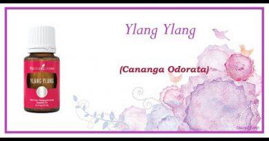 Essential Oils 101: Ylang Ylang