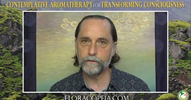 Eucalyptus Essential Oil for Deepening Gratitude with David Crow. L.Ac.