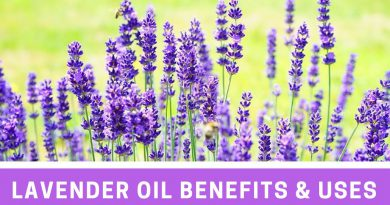 Lavender Essential Oil Benefits & Uses (Why I love it so much!)