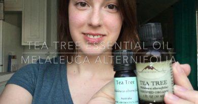 Tea Tree Oil | 3 DIY Recipes