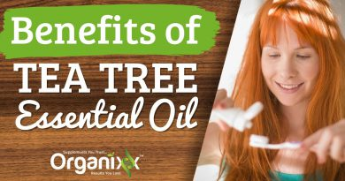 Top 10 Uses & Benefits of Tea Tree Essential Oil