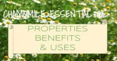 Chamomile Essential Oil - Benefits & Uses