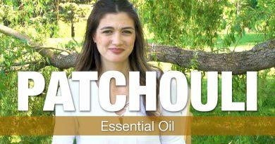 Essential Oil Series - Patchouli