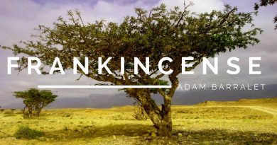Frankincense - The Oil of the Father