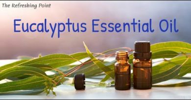 Unexpected Benefits of Eucalyptus Essential Oil - Supports Respiratory Health - Soothes Sore Muscles