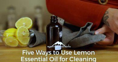 5 Popular Ways to Use Organic Lemon Essential Oil