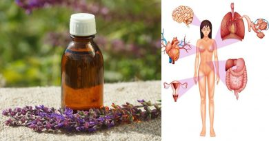 8 Amazing Benefits of Clary Sage Essential Oil  - Home Health Care