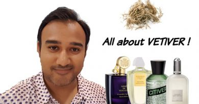 BEST VETIVER FRAGRANCES | All you need to know about Vetiver !