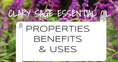 Clary Sage Essential Oil - Benefits & Uses