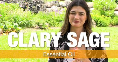 Essential Oil Series - Clary Sage