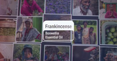 Frankincense Essential Oil | doTERRA Behind the Bottle: Episode 9