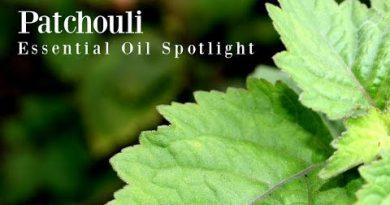 Patchouli Essential Oil Spotlight