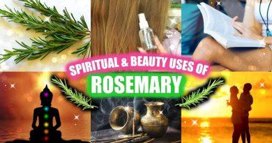 ROSEMARY BEAUTY & SPIRITUAL USES! │ CLEANSING, STUDYING, HAIR & SKIN TONER, LOVE & MORE
