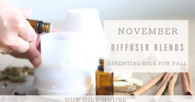 Essential Oil Diffuser Blends for November | Thanksgiving Day Blend