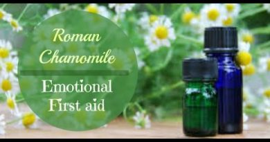 Roman Chamomile Essential Oil for Emotions