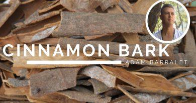 Cinnamon Bark - The Oil of Passion