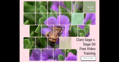 Sage Essential Oil Versus Clary Sage Essential Oil 1 3gp
