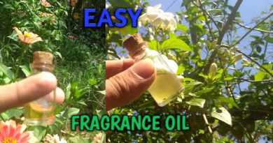 How to make your own perfume oil ; How to make fragrance oil || Jasmine oil.