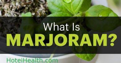 Marjoram Essential Oils