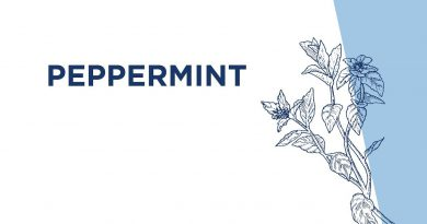 Peppermint Essential Oil Usage