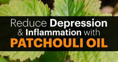 WOW WOW WOW Surprising health benefits of Patchouli essential oil