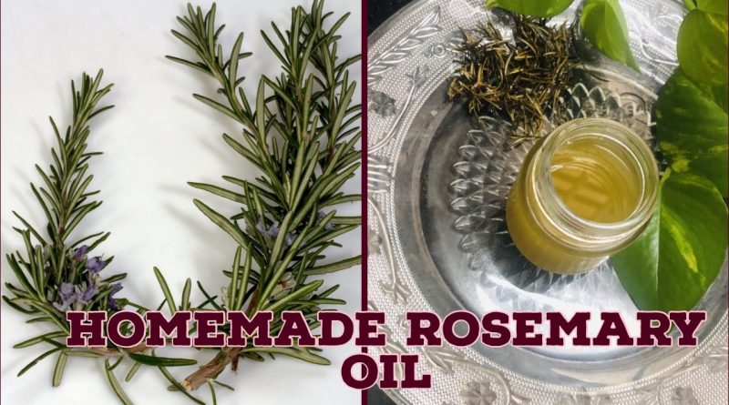 How to make  Rosemary oil at Home ||  DIY Hair Growth oil