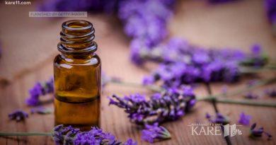 Does lavender essential oil help you sleep?