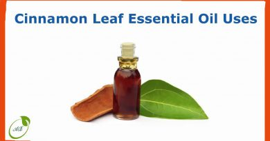 Cinnamon leaf essential oil uses