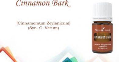 Essential Oils 101: Cinnamon Bark